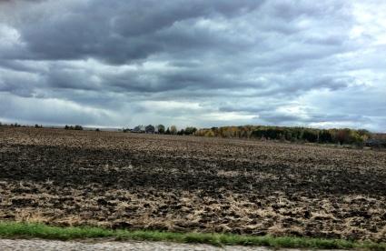 A storm brewing over an autumn field